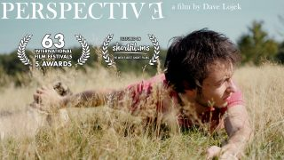 Perspective (2010)