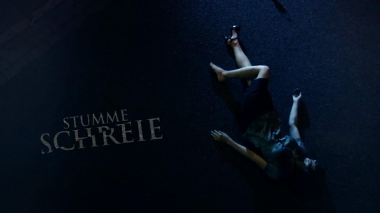 Stumme Schreie (2012)