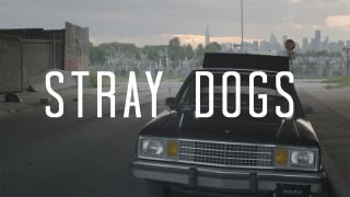 Stray Dogs (2015)