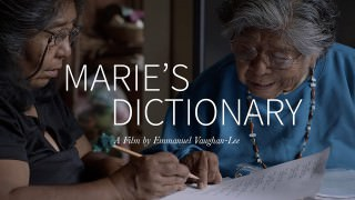 Marie's Dictionary (2015)