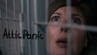 Attic Panic (2015)
