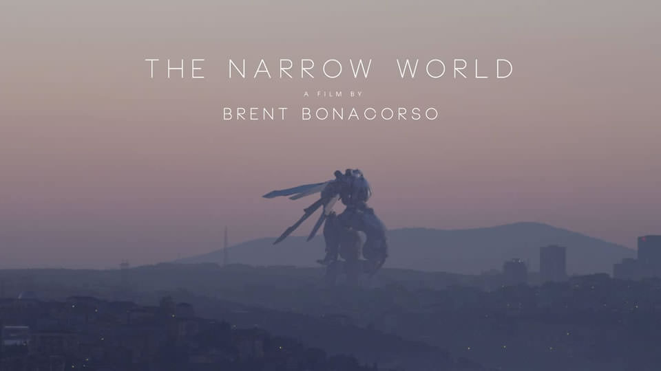 The Narrow World (2017)