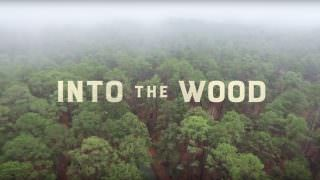 Into the Wood (2017)